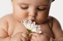 Косметика для новорождённых